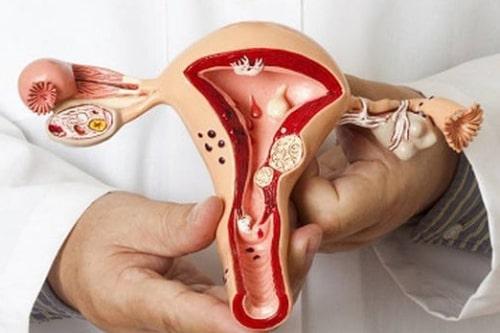 Лечение патологии шейки матки в Краснодаре